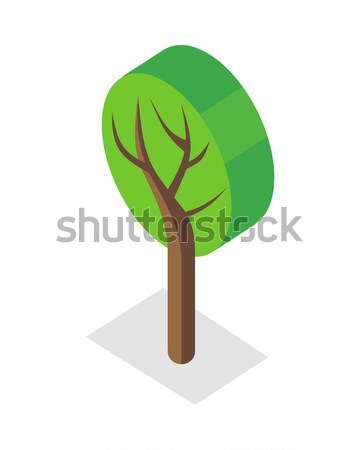 Tree Illustration in Isometric Projection. Stock photo © robuart