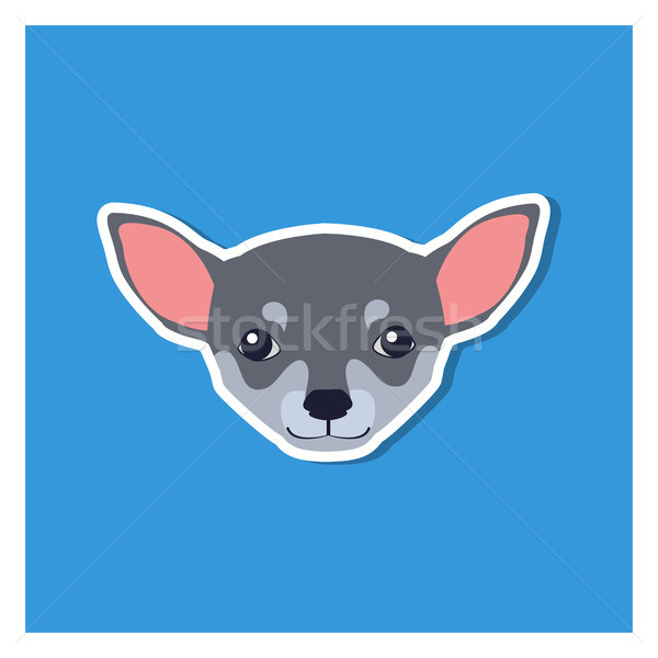 Little Head of Chihuahua Dog Front View Flat Icon Stock photo © robuart