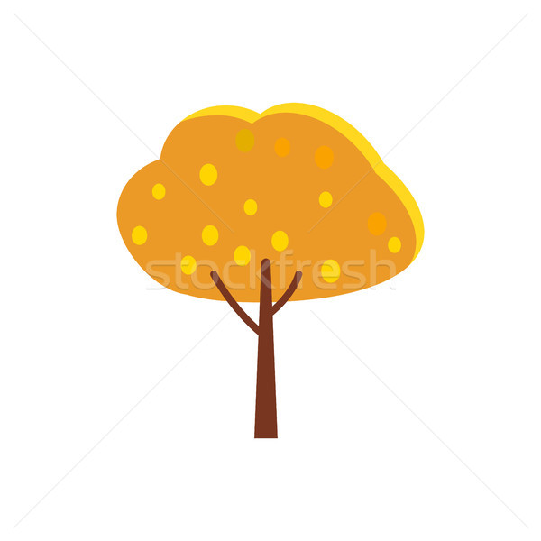 Autumn Tree with Orange Crown and Yellow Leaves Stock photo © robuart