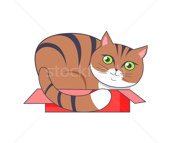 Cat Sitting in Box Red Color Vector Illustration Stock photo © robuart