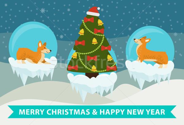 Merry Christmas and Happy New Year Corgi Congrats Stock photo © robuart