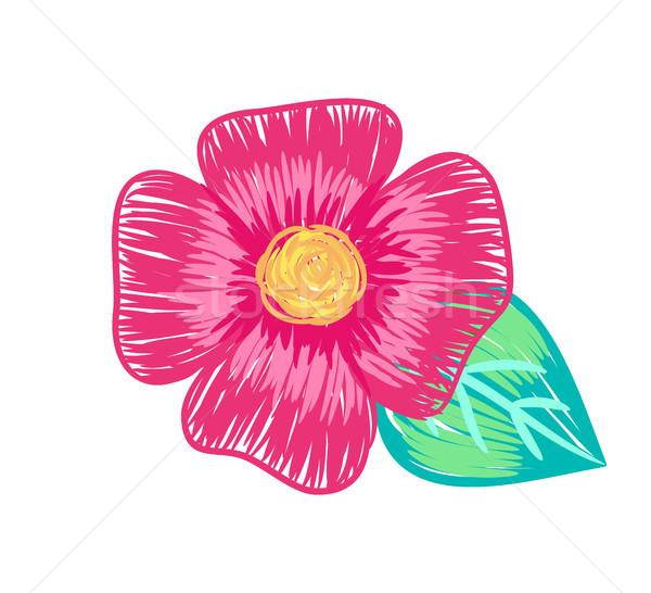 Closeup of Big Flower Poster Vector Illustration Stock photo © robuart