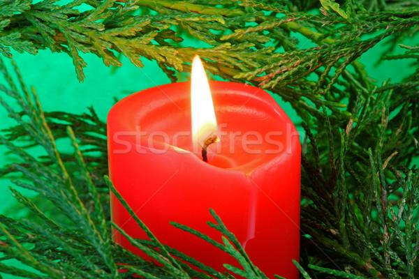キャンドル ツリー デザイン 赤 クリスマス ストックフォト © rogerashford