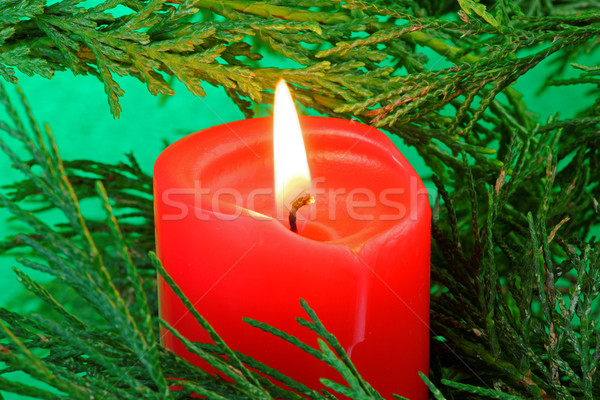Bougie arbre design rouge Noël Photo stock © rogerashford