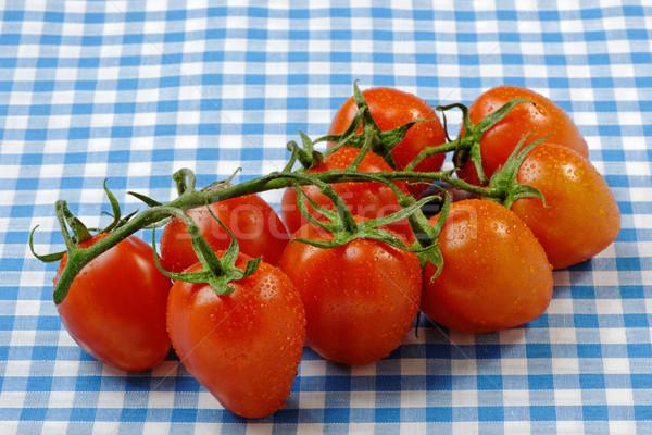 Reben Tomaten bedeckt Feuchtigkeit blau Obst Stock foto © rogerashford