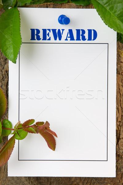 報いる 木の幹 コピースペース 背景 白 ストックフォト © rogerashford