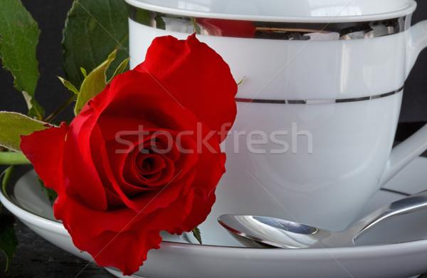 バラ コーヒーカップ 赤いバラ 葉 赤 愛好家 ストックフォト © rogerashford