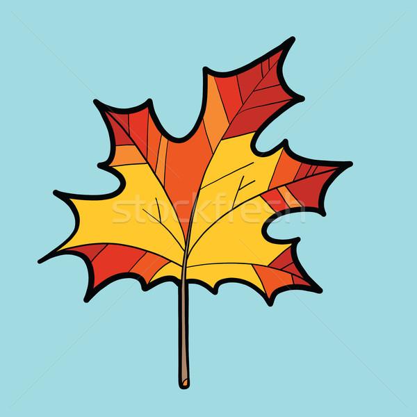 Maple red leaf, nature autumn season Stock photo © rogistok
