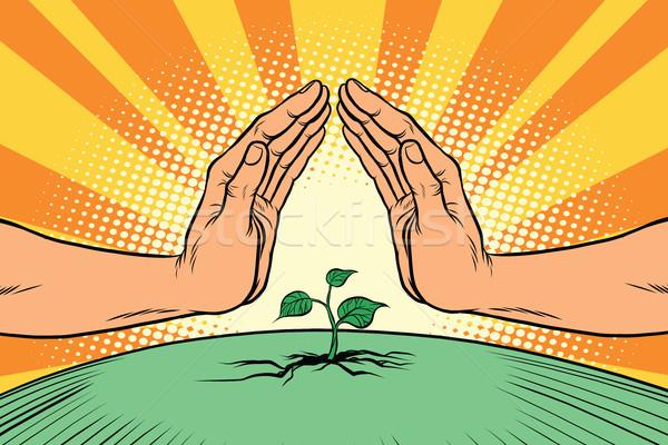 человека рук зеленый среде природы Сток-фото © rogistok