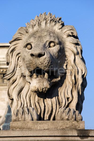 Leão escultura cadeia ponte Budapeste guardião Foto stock © rognar