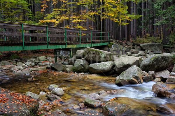 Puente corriente otono forestales gigante montanas Foto stock © rognar