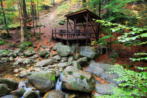 Forest Shelter by the Stream Stock photo © rognar
