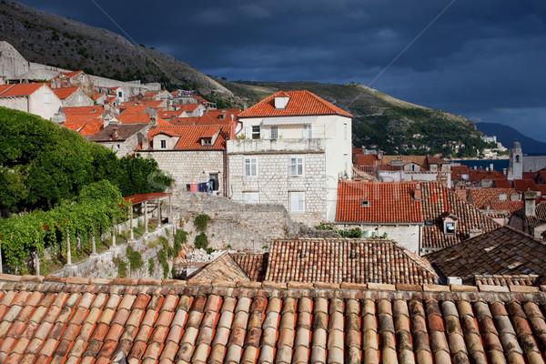 Foto d'archivio: Dubrovnik · vecchio · città · architettura · Croazia · meridionale
