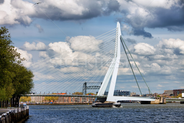 Erasmus Bridge in Rotterdam Stock photo © rognar