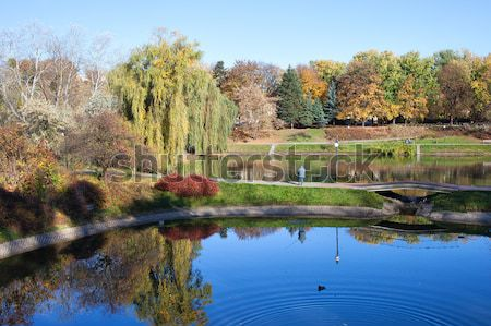 Parc Varsovie paysages automne faible Photo stock © rognar
