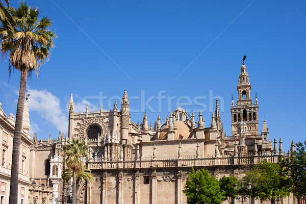 Seville Cathedral  Stock photo © rognar