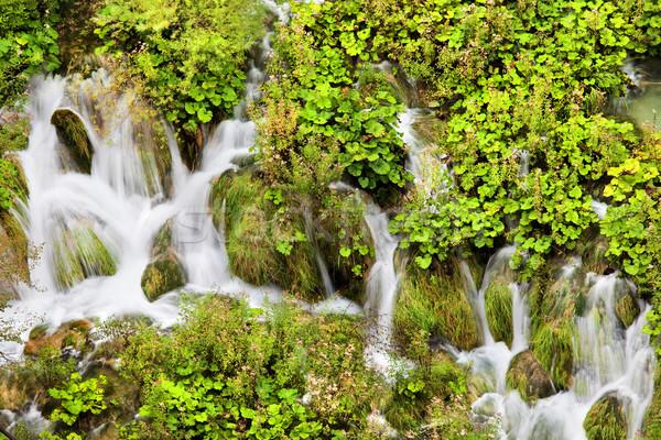 Wody kaskada sceniczny parku Chorwacja zielone Zdjęcia stock © rognar