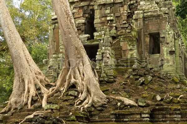 Temple Ruins Stock photo © rognar