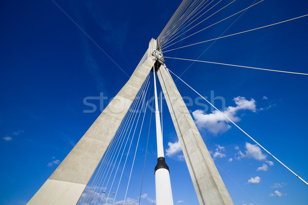 Suspension Bridge Contemporary Shape Stock photo © rognar