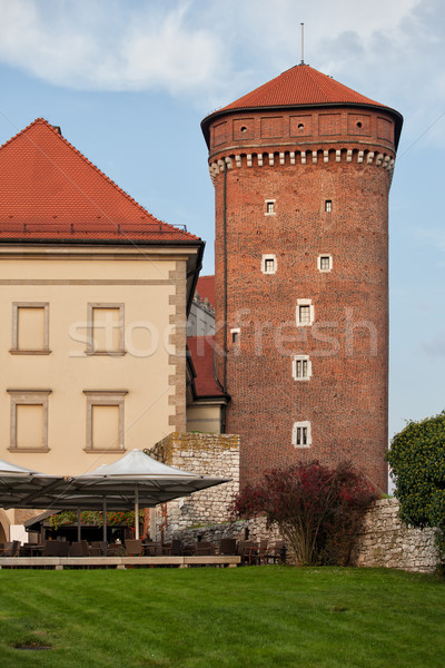Torre castillo cracovia Polonia ciudad arquitectura Foto stock © rognar