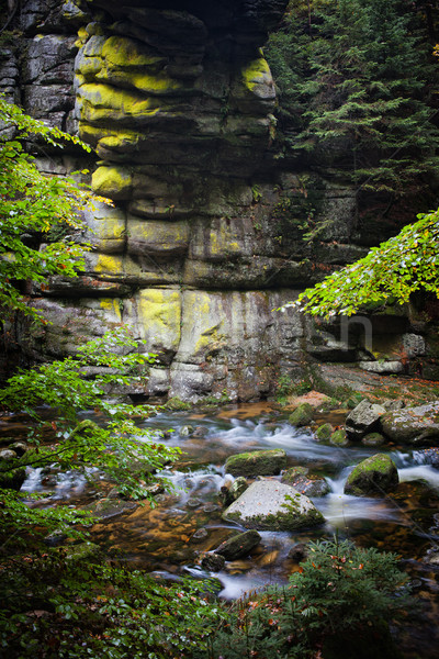 ストリーム 山 秋 森林 公園 自然 ストックフォト © rognar