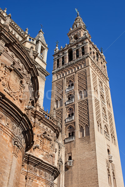 Tower of the Seville Cathedral Stock photo © rognar