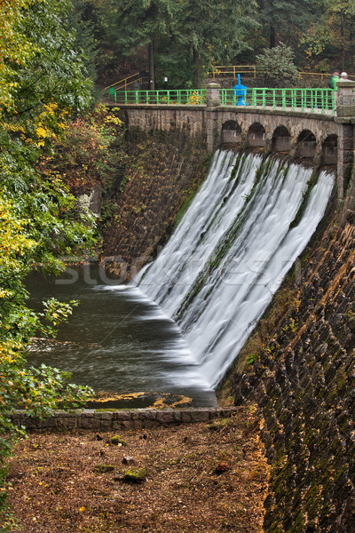 Dam on Lomnica River in Karpacz Stock photo © rognar