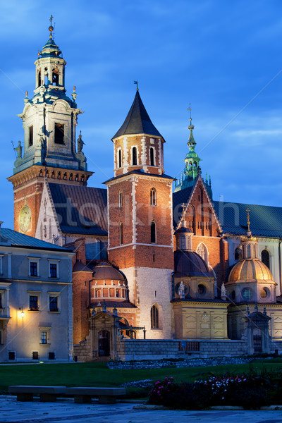 Wawel Royal Cathedral by Night in Krakow Stock photo © rognar