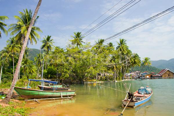 Knall ländlichen Landschaft Insel Thailand Fisch Stock foto © rognar