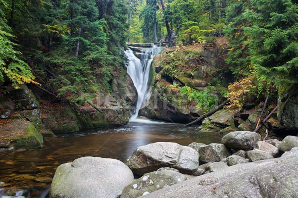 Cascata montagna autunno foresta parco natura Foto d'archivio © rognar
