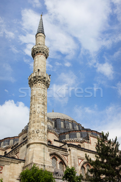 Prins moskee istanbul turks historische architectuur Turkije Stockfoto © rognar