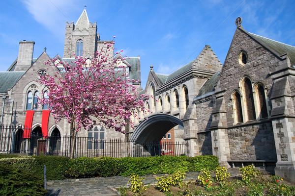キリスト 教会 大聖堂 ダブリン アイルランド 建物 ストックフォト © rognar
