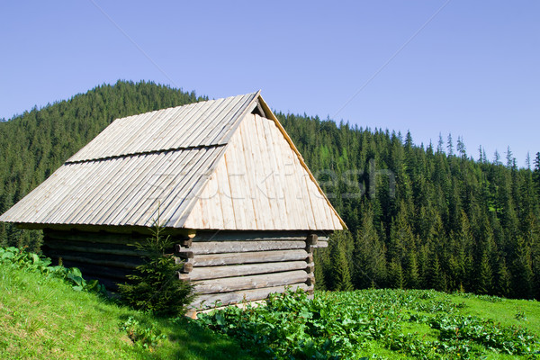 Wooden Hut in the Tatra Mountains Stock photo © rognar