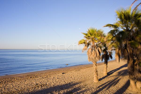 Tengerpart Spanyolország kora reggel homokos tengerpart mediterrán tenger Stock fotó © rognar