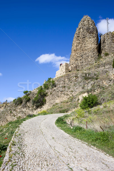 Rural Road in Andalusia Stock photo © rognar