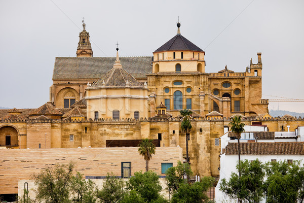 Mosque Cathedral of Cordoba in Spain Stock photo © rognar