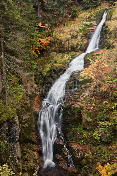 Kamienczyk Waterfall in Karkonosze Mountains Stock photo © rognar