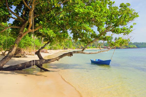 Trópusi sziget díszlet festői távoli fehér homok tengerpart Stock fotó © rognar