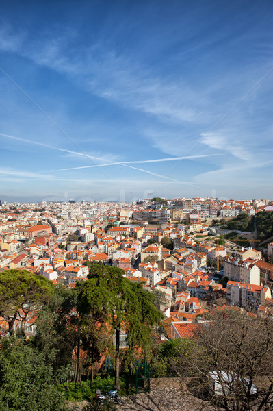 Stadsgezicht Lissabon Portugal skyline huizen Europa Stockfoto © rognar