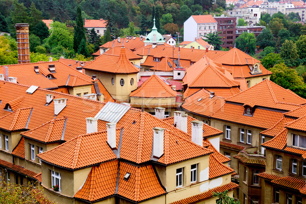 Tiled Roofs in Prague Stock photo © rognar