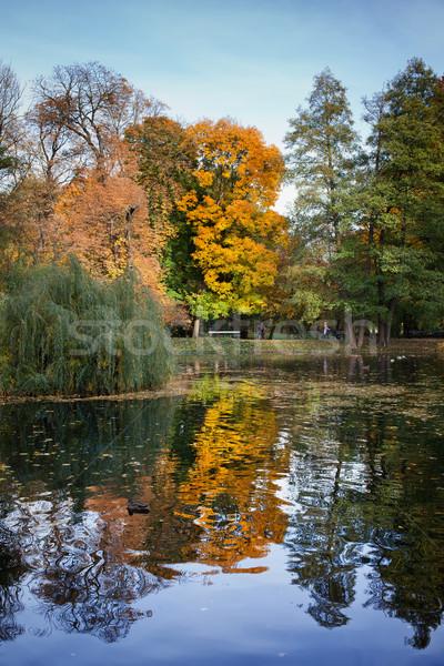 公園 秋 風景 ワルシャワ 市 ポーランド ストックフォト © rognar