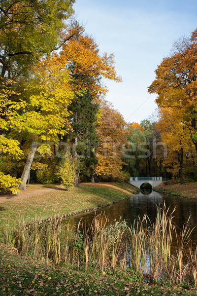 Parc Varsovie canal automne arbres royal Photo stock © rognar