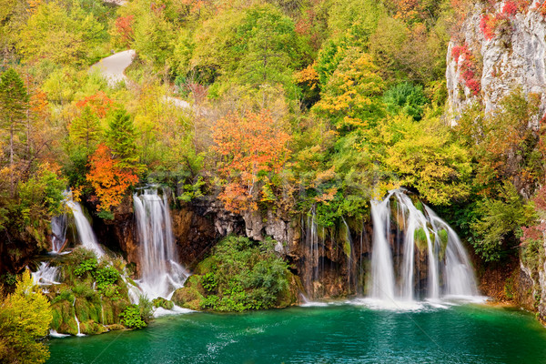 Waterfalls in Autumn Forest Stock photo © rognar