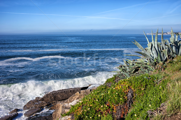Atlantic Ocean Coastline in Estoril Stock photo © rognar