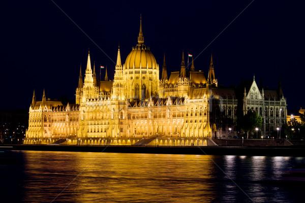Hungarian Parliament Building at Night Stock photo © rognar