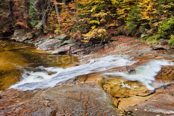 Stock photo: Fall Stream in Mountain Forest