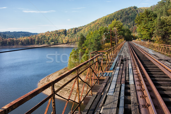 Old Railway Bridge Over Pilchowickie Lake In Poland Stock photo © rognar