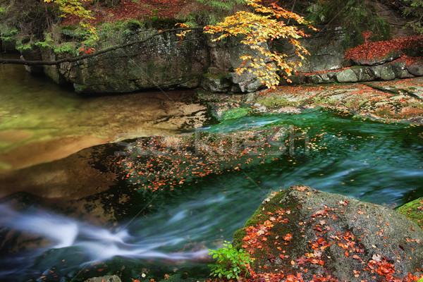 Hegy patak ősz hegyek kövek víz Stock fotó © rognar
