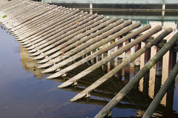 Wooden Breakwater Stock photo © rognar