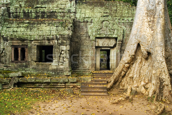 Ta Prohm Temple Ruins Stock photo © rognar